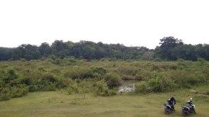Hamparan lahan yang tidak produktif pasca-tambang emas di Padang Sibusuk. (foto: Arsip Daur Subur, 2018)