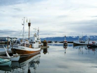 akureyri-viaggio-in-islanda-29