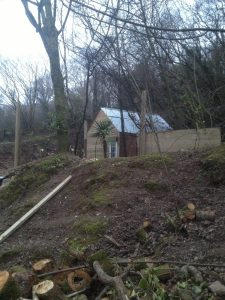 The shed at Wild Wood