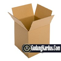 Vendor Karton Box Styrofoam