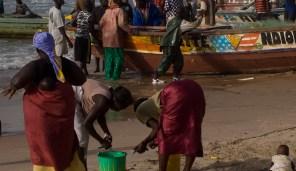 Gambia - Preparing the catch