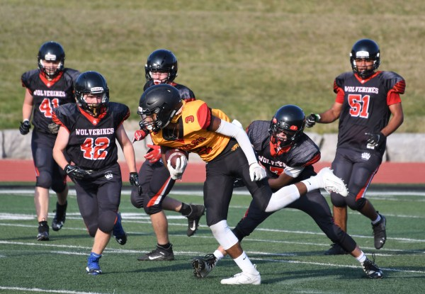 Photos: Junior Gryphons-Woodstock OPFL regional JV football