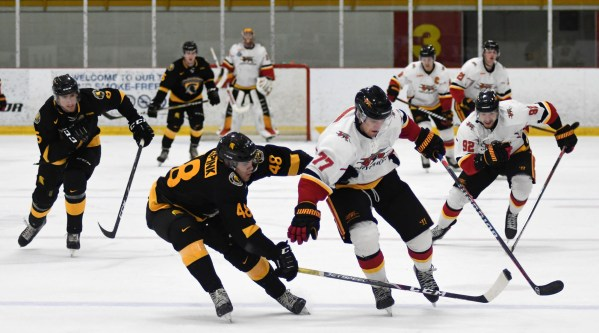 Photos: Guelph Gryphons-Waterloo men's hockey
