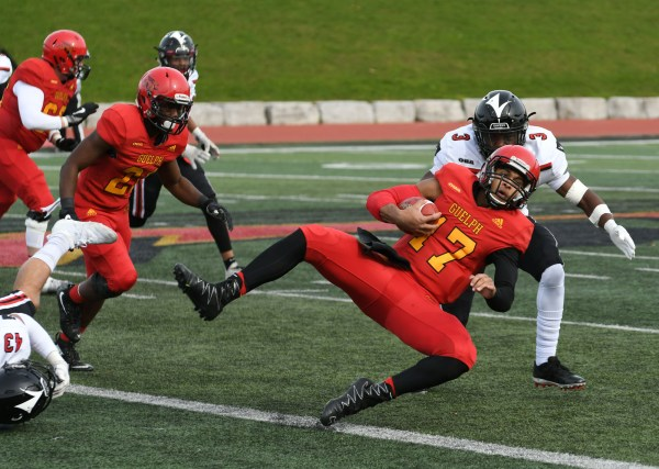 Photos: Guelph Gryphons-Carleton quarter-final football