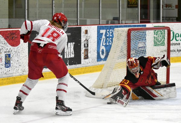 Photos: Guelph Gryphons-York women's hockey