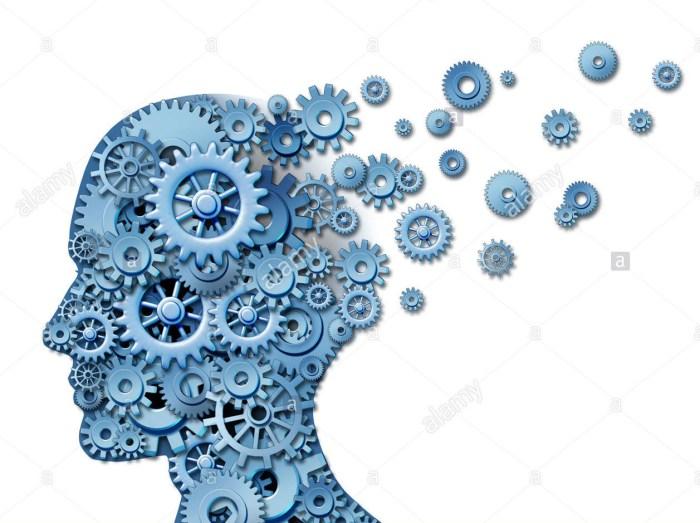 Maladie d'Alzheimer : le régime cétogène à l'étude