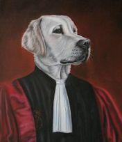 chien tribunal