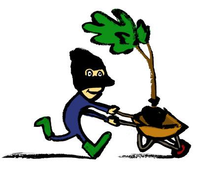 Stage aangeboden: ontwikkel een guerrilla gardening challenge