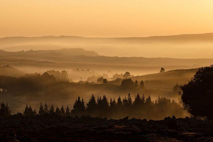 Mist and Landscape