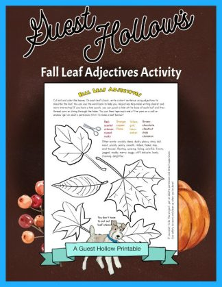 Fall Leaves Printable Activity