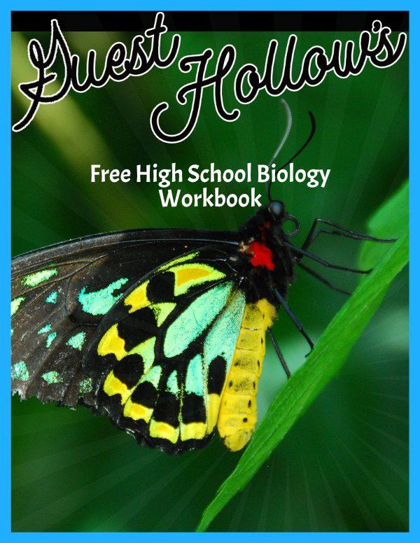 High School Biology Workbook