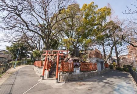 桃ヶ池公園では春になるとお花見が楽しめます。 모모가이케 공원에서 봄이 되면 꽃놀이를 즐길 수 있습니다. 在桃ヶ池公園,春天的時候能享受赏樱花。 You can enjoy Hanami (cherry blossom festival) in Spring at Momogaike Park! Vous pouvez apprecier Hanami ( comptempler des fleurs de cerisier) pedant le printemps au parc Momogaike ! 桃之池公園在春天時可以賞花。