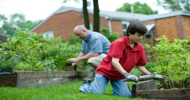 Save-Money-Gardening-Tricks