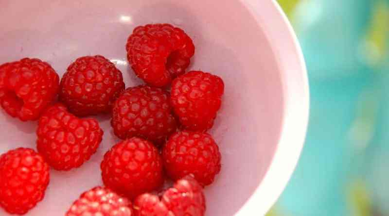 Smukke og velsmagende hindbær, der er perfekte til en god og klassisk hindbærgrød. Bærrene er sarte, så de skal behandles og koges med forsigtighed. Foto: Guffeliguf.dk.