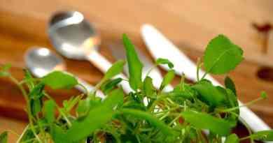 Bagte hvidløg er dejligt tilbehør til blandt andet oksesteg. Skær toppen af hvidløgene, giv dem lidt smør og bag dem i ovnen i cirka 20 minutter. Genrefoto: Guffeliguf.dk.
