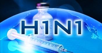 H1N1 ili nova gripa