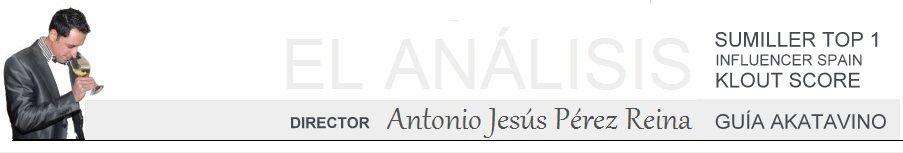 Analizado por Antonio Jesús Pérez TOP Sumiller Guía AkataVino
