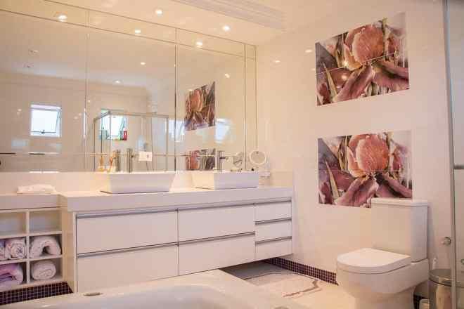 baño_sanitario_roca