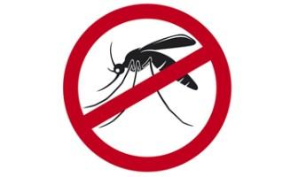 teste dengue 18011