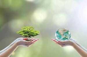 sustentabilidade 1
