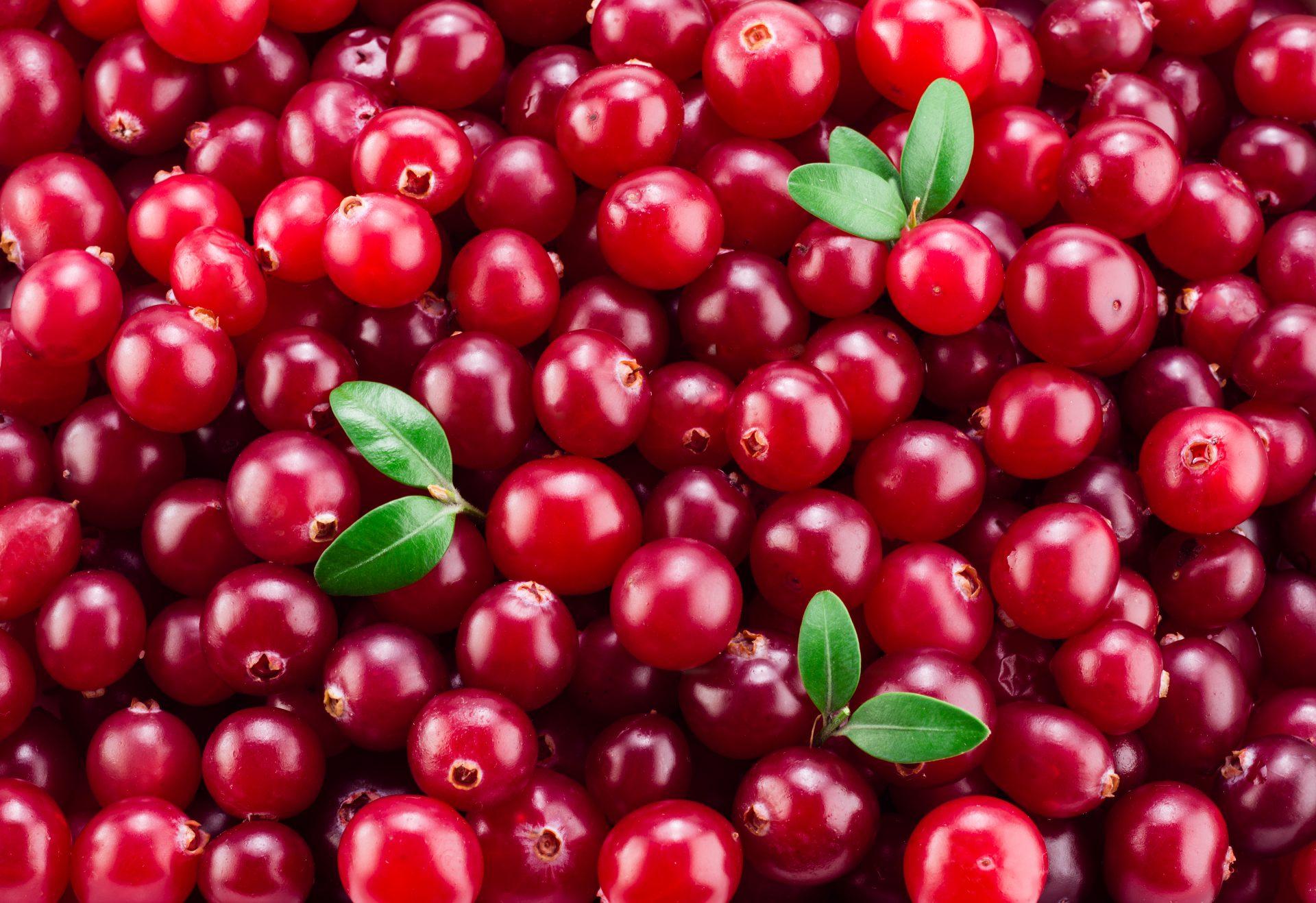 frutas para pacientes com câncer de sangue