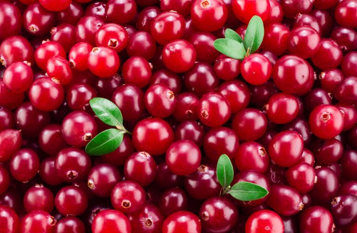 cranberry-para-que-serve-beneficios-e-como-utilizar