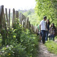 33 idílicas rutas en Asturias difíciles de olvidar