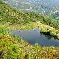 Ruta Lagunas de Chagueños.... con un verdor sin igual, que te acompañará durante todo el recorrido