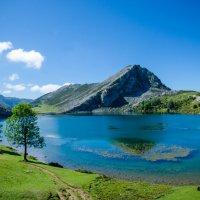 Información de acceso a los Lagos de Covadonga 2021
