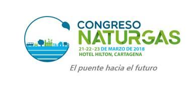 Las tres prioridades de Naturgas para el nuevo gobierno
