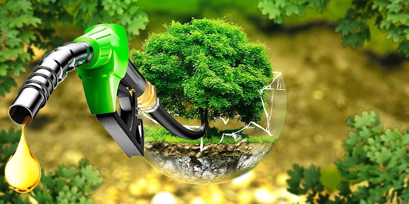 Proporción del biodiésel sube al 12% en Colombia