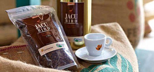 Jacu Bird - um dos tipos de café com fezes