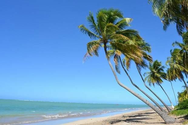 Melhores praias do Brasil: Porto de Pedras - Praia Patacho - Alagoas