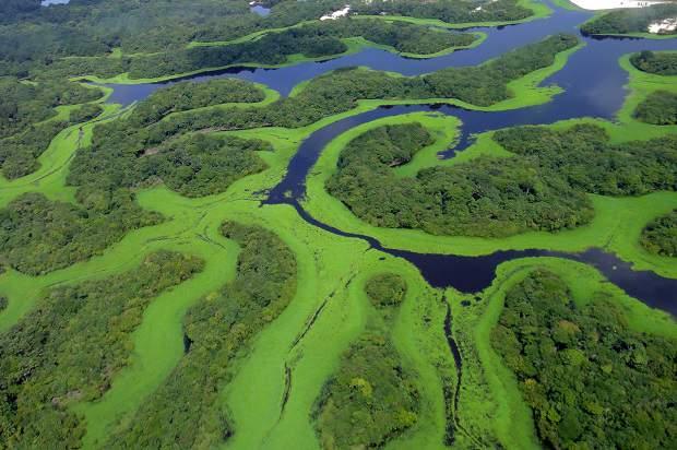 Os 7 Incríveis Patrimônios Naturais da UNESCO no Brasil!
