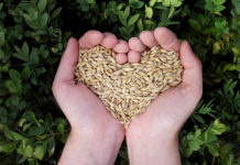 franquias de produtos naturais e suplementos