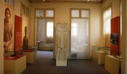 Museu Emilio Goeldi