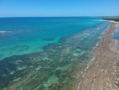 Praia de Carneiros