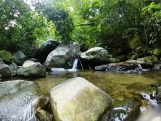Parque Estadual da Pedra Branca