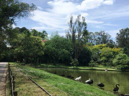 Parque Zoológico da Fundação Zoobotânica do Rio Grande do Sul