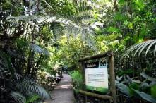 Parque São Francisco de Assis