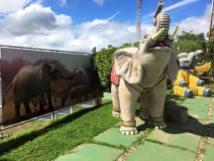 Mirante Morro do Elefante