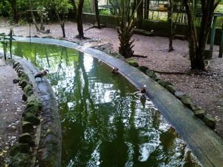 Parque Turístico Ecológico A Tribuna