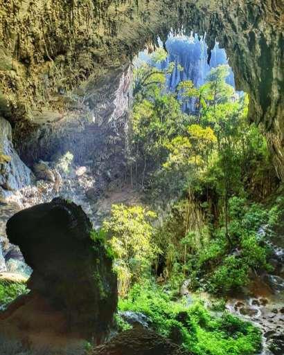 Parque Estadual Turístico do Alto Ribeira PETAR