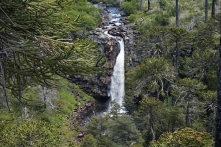 Cascada Coloco