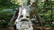 Bosque Tallado