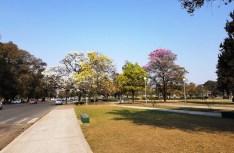 Parque 9 de Julio/ foto Gerardo Auad
