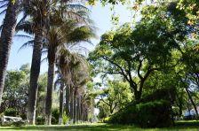 Jardín Botánico Martín Cárdenas/ foto Ronald Apaza Siles