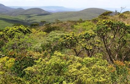 Parque Nacional do Boqueirão da Onça