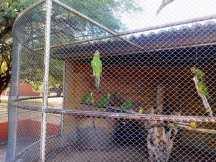 Parque Zoobotânico da Caatinga/ foto Fatinha Gregório