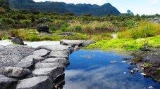 Parque Nacional Puracé